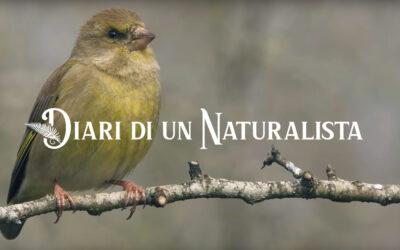 """1 Maggio – Proiezioni a cura di Giacomo Radi e Federico Santini """"Diari di un Naturalista"""""""